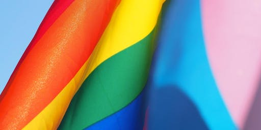 LGBTQ Competency and Inclusivity 101