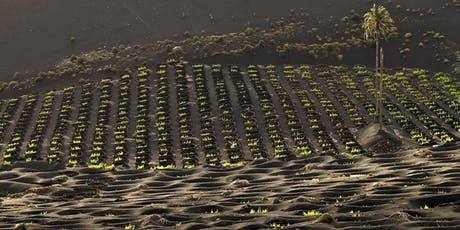 Pressoir.wine Session-Canary Island Wines with David Bowler tickets
