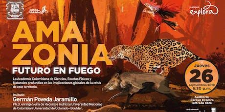 Amazonia entradas