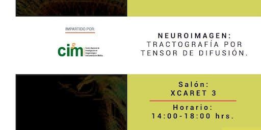 Neuroimagen: Tractografía por tensor de difusión
