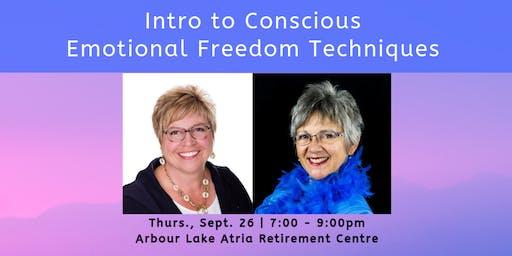 Intro to Conscious EFT