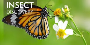 Insect Discovery Workshop Spring 2020 Request