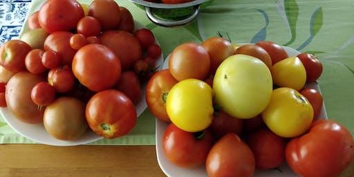 """""""Pasta fatta in casa con salsa di pomodoro fresco di Makhbuba"""""""