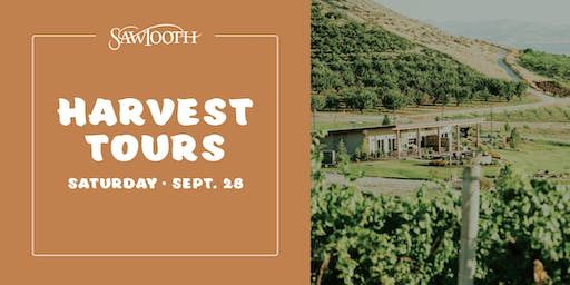 Sawtooth Winery Harvest Tours