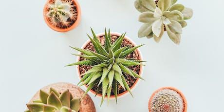 Clay Workshop: Pinch Pot Planter tickets