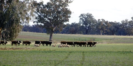 Lancefield Producer Workshop
