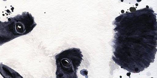 Peeping panda