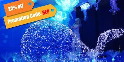 Ocean Cube - Immersive Pop-up Exhibit