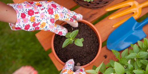 Get Green and Creative - Decorate a Pot and Plant a Plant!