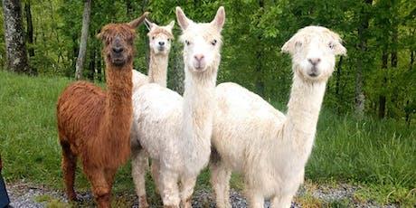 Thanksgiving Day: Thursday, November 28th, 2019 Alpaca Farm Visit tickets