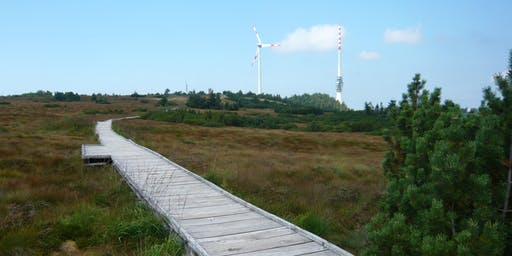Single-Wanderung Hornisgrinde - Mummelsee (50+)