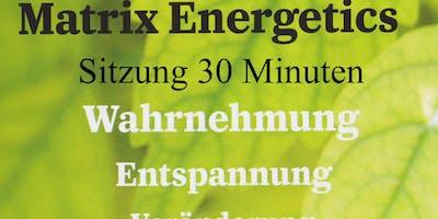 Matrics Energetics Sitzung (30 min) auf der Messe Power & Potential
