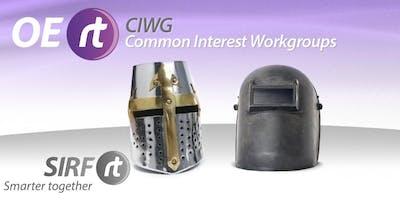 Daily Standup Meetings (Short Interval Management) OERt CIWG