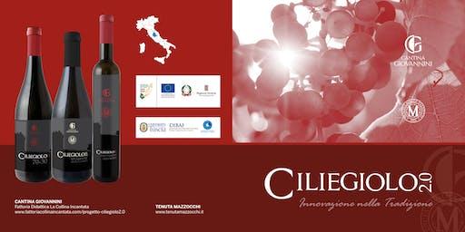 Presentazione Vino Ciliegiolo 2.0 con visita al vigneto e degustazione vino