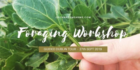 Guided Foraging Workshop Dublin tickets