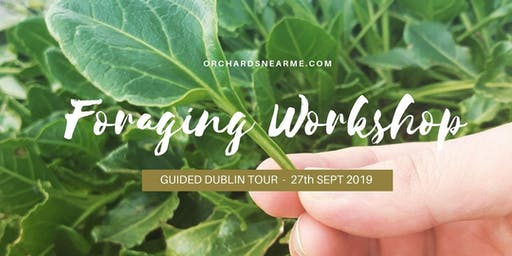 Guided Foraging Workshop Dublin