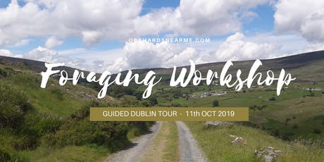 Guided Foraging Workshop Wicklow tickets