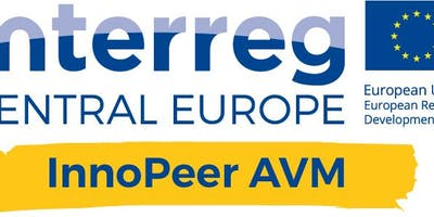 InnoPeer AVM Strategy Camp 5