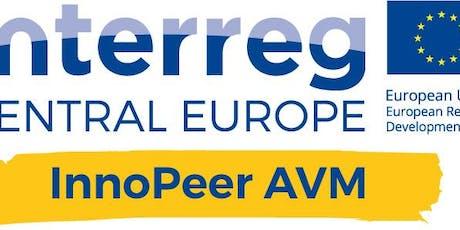 InnoPeer AVM Strategy Camp 5 biglietti