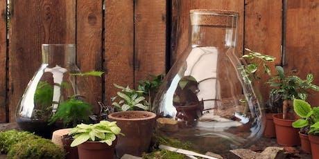 """Atelier """"création d'un jardin de verre"""". (grand vase: 32 cm) billets"""