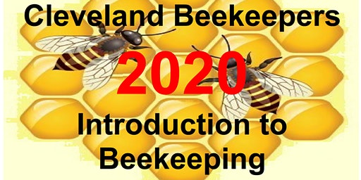 Introduction to Beekeeping 2020