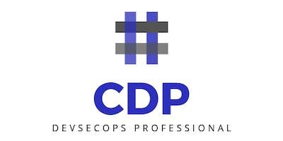 DevSecOps Professional Course - Practical DevSecOps