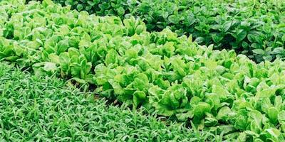 Laboratorio PAT.  Tradizione e agroalimentare in Sardegna - AgriCultura