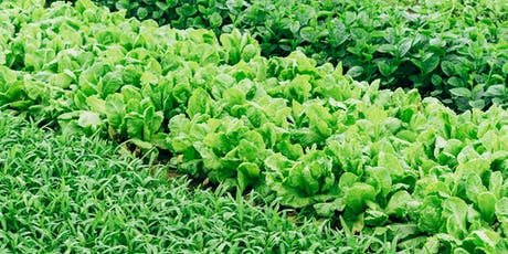 Laboratorio PAT.  Tradizione e agroalimentare in Sardegna - AgriCultura biglietti