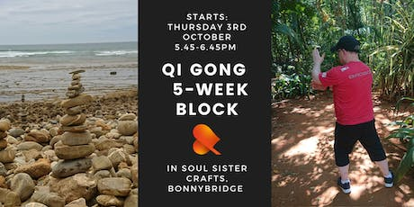 Qi Gong - 5-Week Block - Individual Sessions - Bonnybridge tickets
