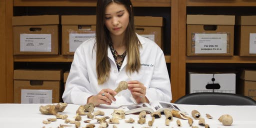The Science of Broken Bones