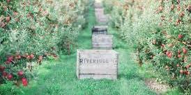 Riveridge Orchard & Facility Tour