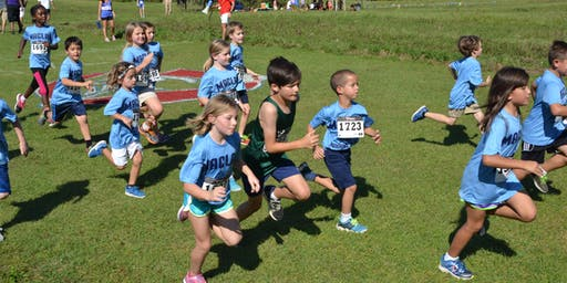 2019 Tallahassee Elementary Cross Country Championship