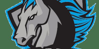 Syracuse Stallions vs. Northeast Enforcers
