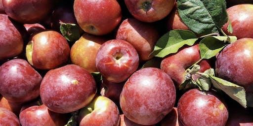 BEAUAtelier VI: Pomme et cie