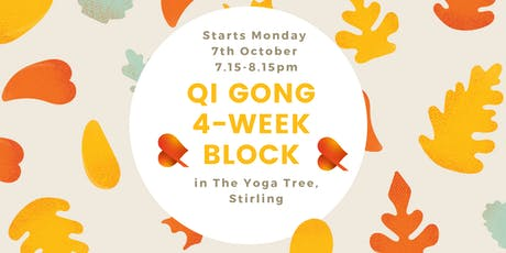 Qi Gong - 4-Week Block - Individual Sessions -Stirling tickets