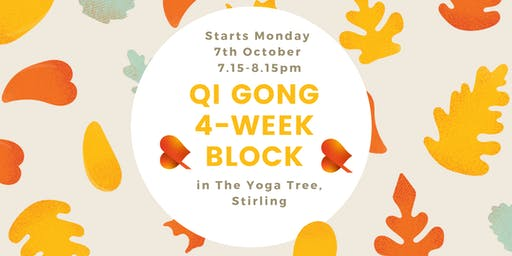 Qi Gong - 4-Week Block - Individual Sessions -Stirling