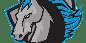Syracuse Stallions vs. Worcester 78's