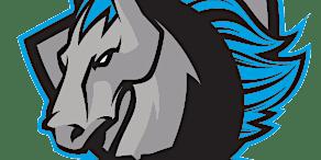 Syracuse Stallions vs. Roc City Ravens