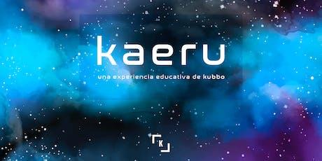 Presentación Kaeru entradas