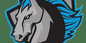 Syracuse Stallions vs. Oneonta Octane
