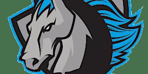 Syracuse Stallions vs. Binghamton Bulldogs