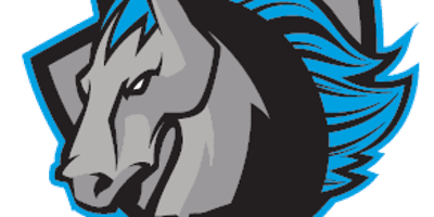 Syracuse Stallions vs. Lehigh Valley Hunters