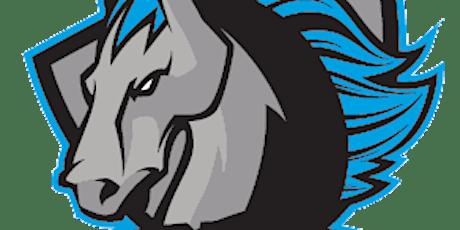 Syracuse Stallions vs. Elmira Eagles tickets