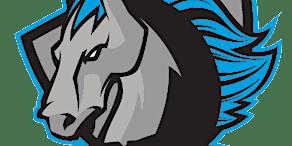 Syracuse Stallions vs. Elmira Eagles