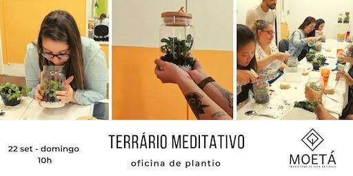 Terrário Meditativo - oficina de plantio