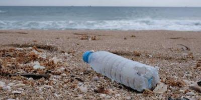 Clacton Pier Beach Clean