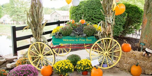 Pine Run Annual Fall Festival