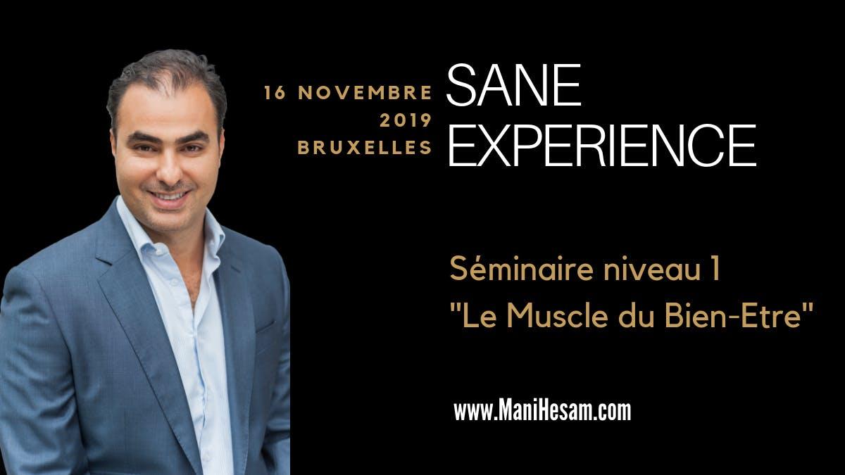 Sminaire Mani Hesam SANE Exprience niveau 1  Bruxelles  - Le Muscle du Bien-Etre