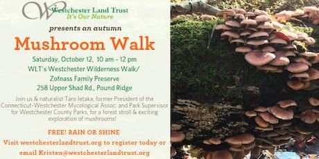 An Autumn Mushroom Walk tickets