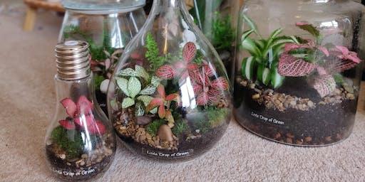 Terrarium Workshop with Little Drop of Green